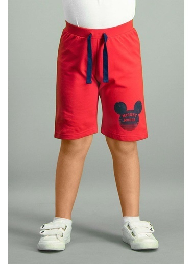 Mickey Mouse Mickey & Minnie Mouse Lisanslı Deniz Mavisi Erkek Çocuk Bermuda Kırmızı